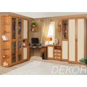 """Комплект мебели в детскую комнату угловой с книжным шкафом и столом """"Дана-4"""""""