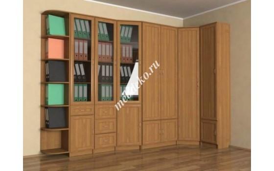 """Стенка в детскую комнату """"Эсфирь-6"""" библиотека"""